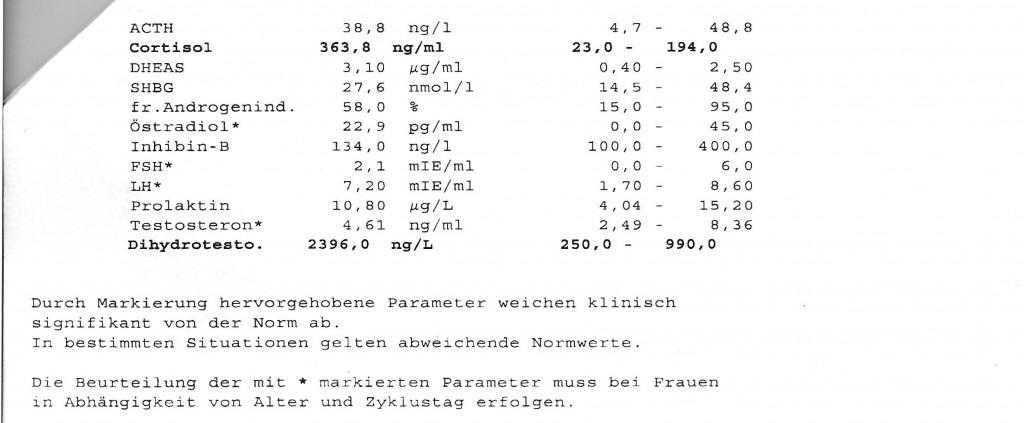 blutwerte-theresa2 1